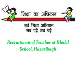 vacancy for teacher at model school